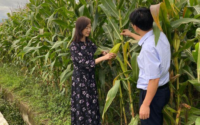 人大代表赵立欣:引导社会资本建设农产品产地仓储保鲜设施