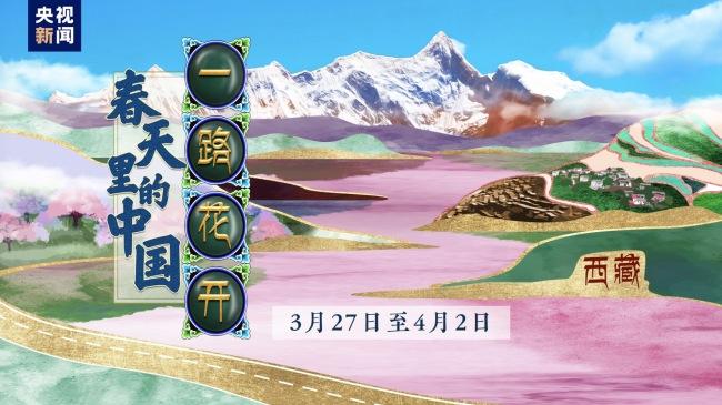扎西德勒!一路花开看西藏 是想要的诗和远方