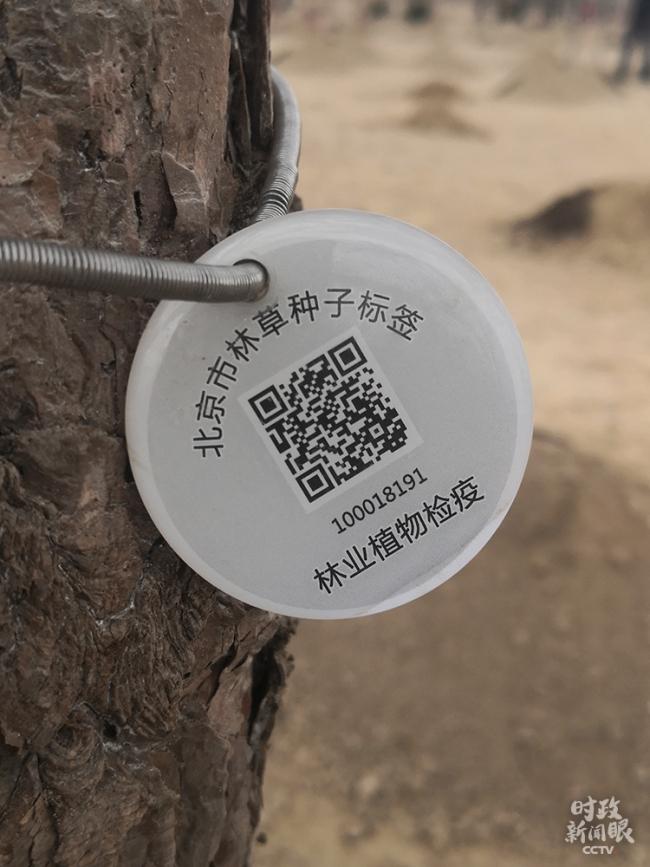"""时政新闻眼丨参加首都义务植树,习近平揭示""""好传统""""的""""新内涵"""""""