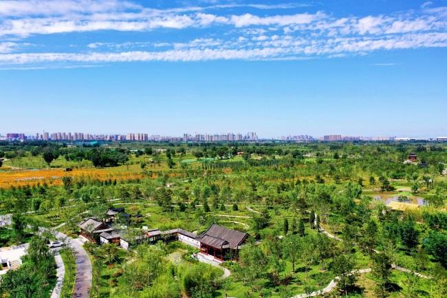 开窗见绿出门见园!从60万米高空看城市副中心的生态福利