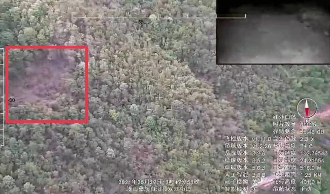 官方:为人象安全 暂不对外公布北上野象群位置