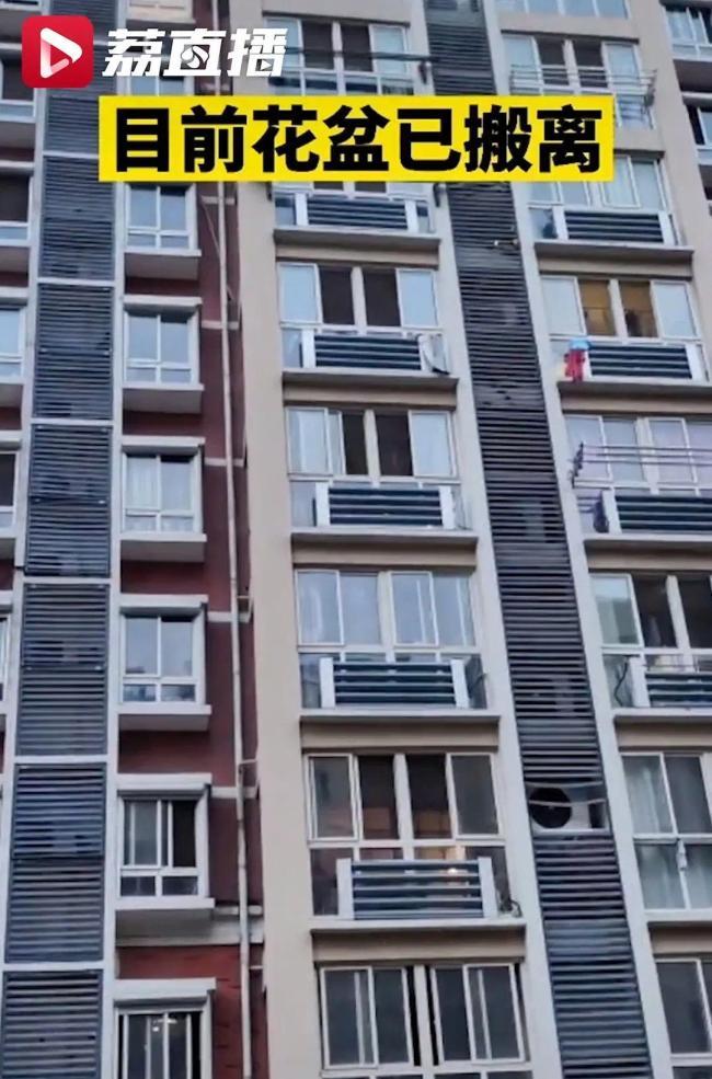 男子爬到6楼窗台外浇花,网友:简直用生命养花!