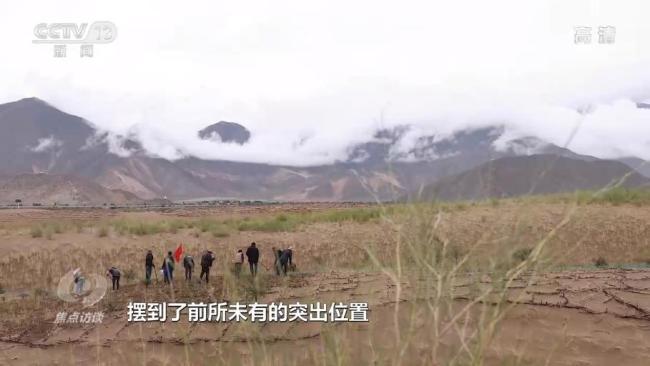 焦点访谈:雪域高原的绿色奇迹