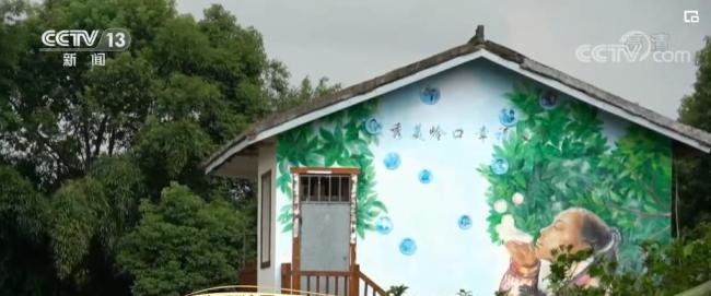 【走进乡村看小康】江西湾里:彩绘扮靓乡村 绘出振兴画卷