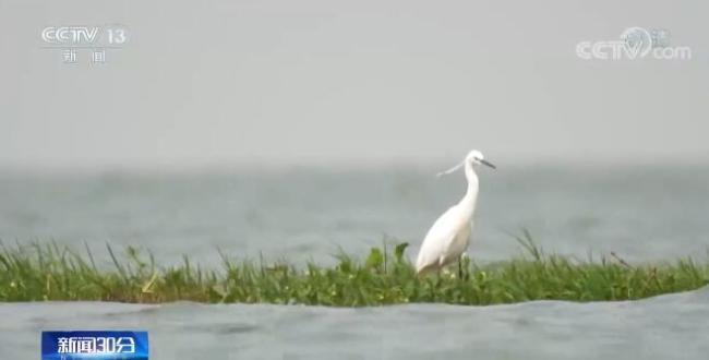 绿色生态健康发展   云南加强九大高原湖泊环境监管 严控开发强度