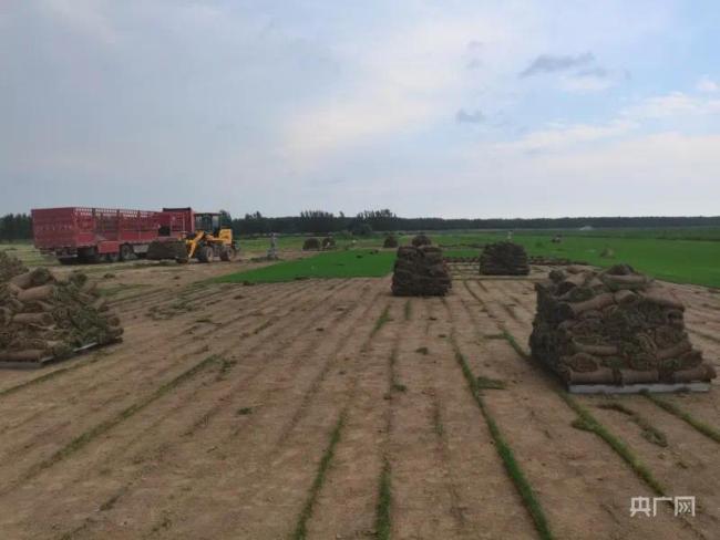 """农民哭求""""别把土带走""""!部分农村土地流转已失控"""