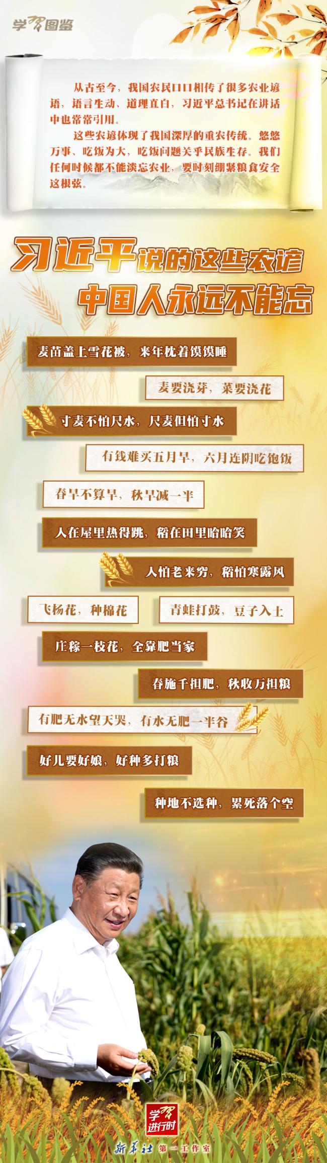学习进行时|习近平说的这些农谚,中国人永远不能忘