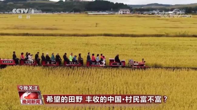 中国农业强不强?村民富不富?答案就在这希望的田野上