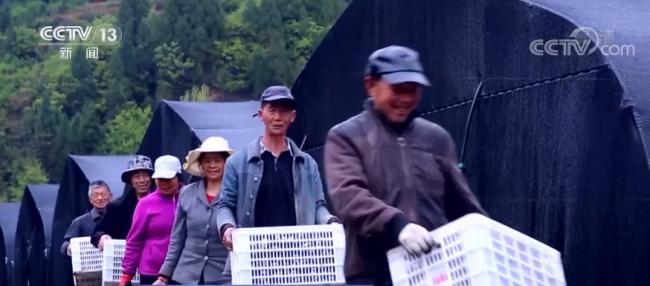 东部省份深入做好省际间劳务协作 加大对国家乡村振兴重点帮扶县就业帮扶力度