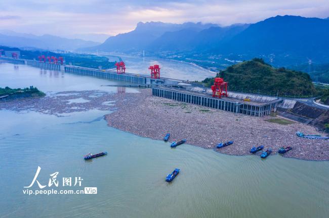 湖北宜昌:三峡坝前清漂忙【2】
