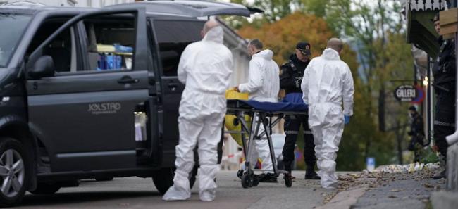 挪威弓箭袭击事件嫌疑人承认犯罪