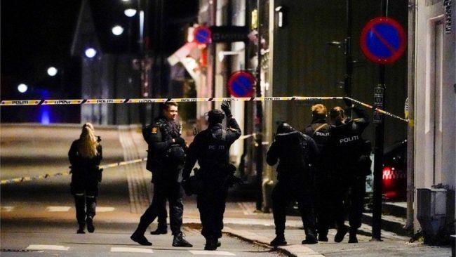 挪威弓箭袭击事件致5死2伤 警方未排除恐袭可能