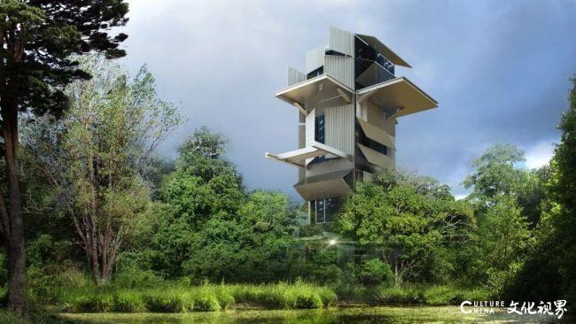 青岛西海艺术湾创始人孟宪伟:真正的艺术,就是不断探寻陌生的领域
