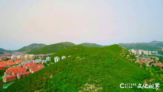 一座千佛山,成就济南旭辉银盛泰·博观山悦的独特气质与一个圈层的仰望