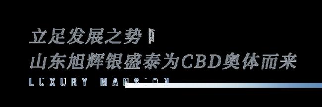 济南CBD奥体中心区域发展论坛在旭辉银盛泰奥体·铂悦府营销中心盛大举行