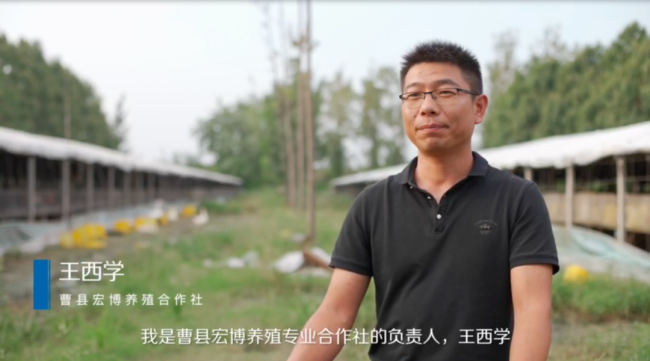 菏泽曹县养殖业蜕变背后,是数字金融助力乡村振兴建设