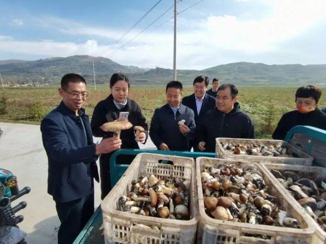济南市投资促进局携企业赴甘肃临夏州开展产业对接,多个合作意向现场达成