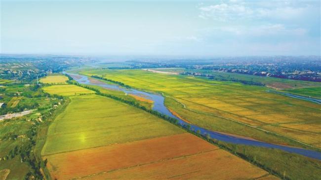 """榆林市横山区农业发展的""""破局之变"""""""
