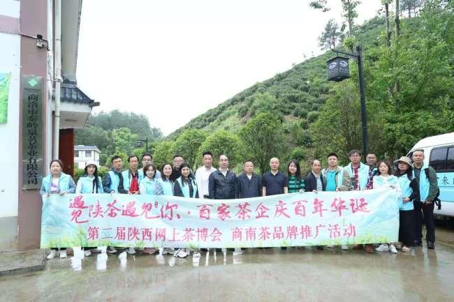 第二届陕西网上茶博会商南茶品牌推广活动举行