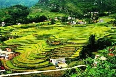 陕西:持续加强乡村振兴资金保障