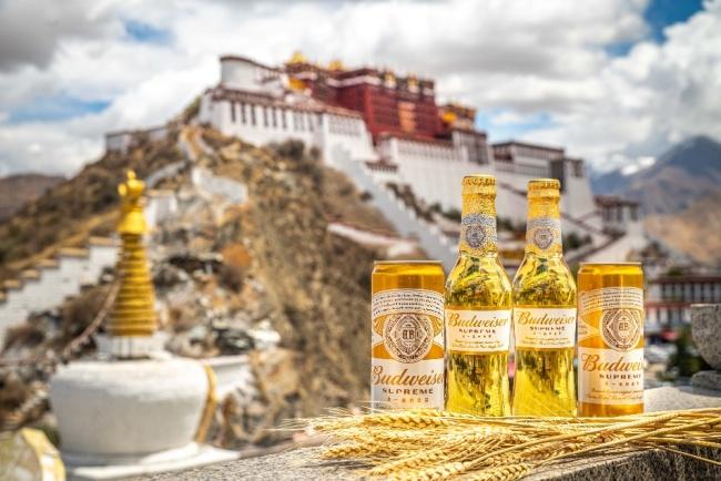 百威金尊本土定制,推出西藏专享版