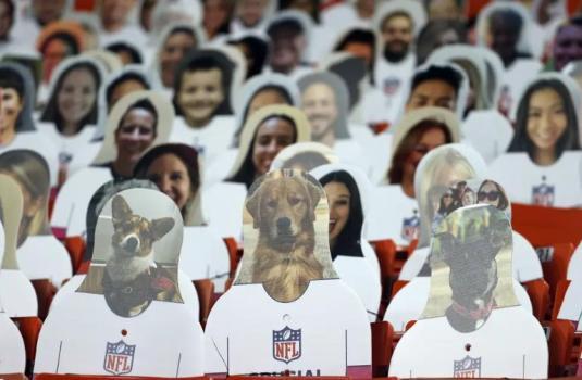 美国超级碗现场坐3万个纸片人:每个收100美元 还有动物头像